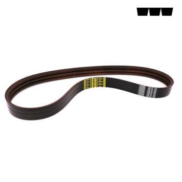 K9848850 Power Band Belt