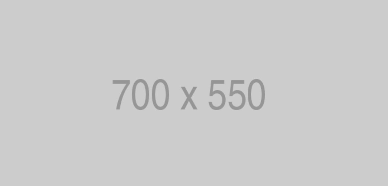 700x550